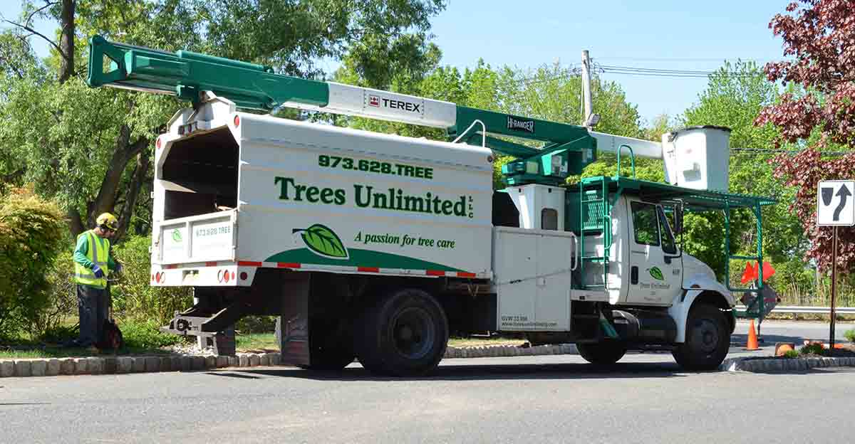 Trees Unlimited Truck - Tree Care Professionals