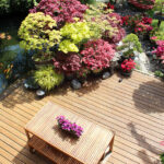 Best Trees to Plant Around Your Pool