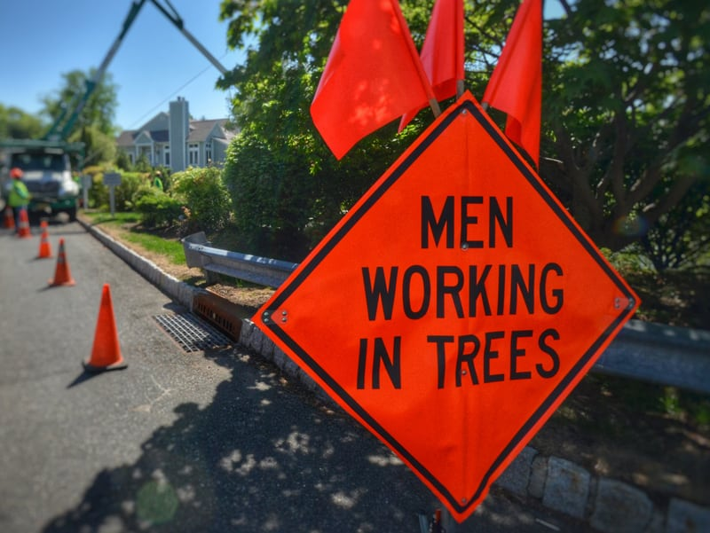Men Working in Trees Sign