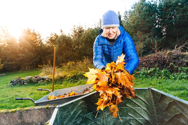 Got Leaves? Make Good Use of Them and Compost This Fall