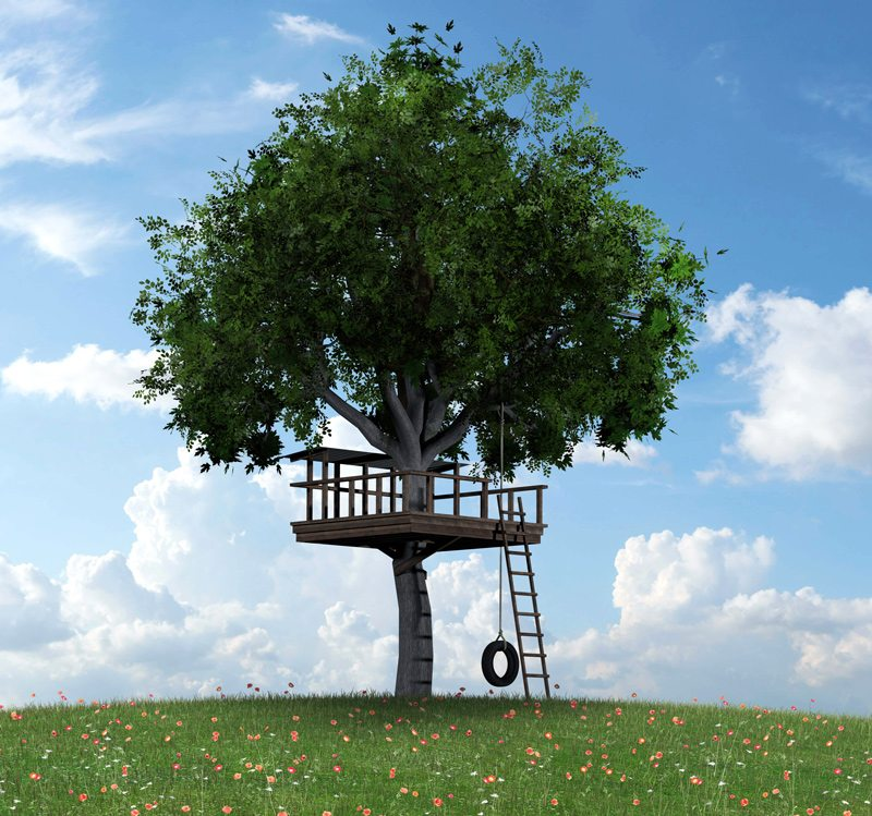 Tree with Treehouse and Tire Swing
