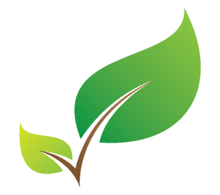 Two Tree Leaves Icon