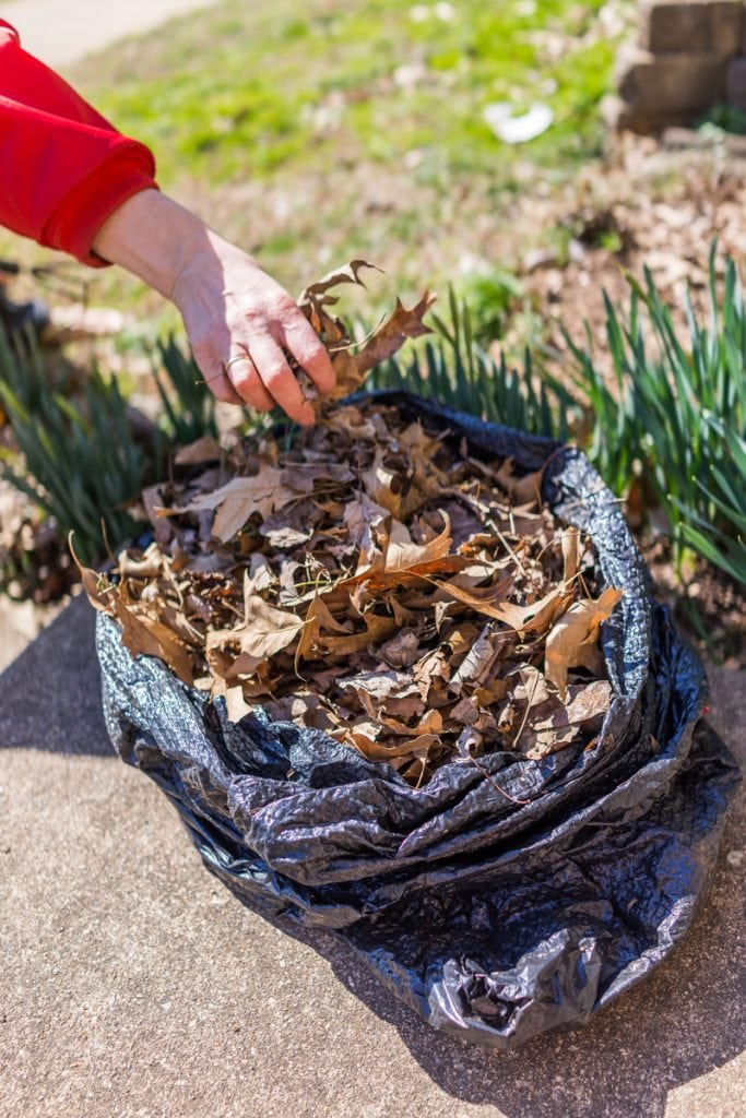 Bag of Leaves for Compost