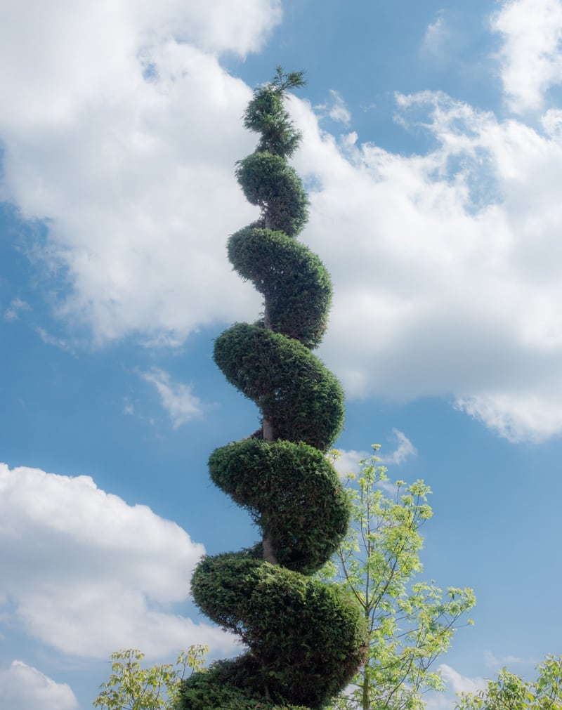 Tall Tree Sculpture in Spiral Design