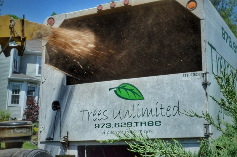 Trees Unlimited Company Truck