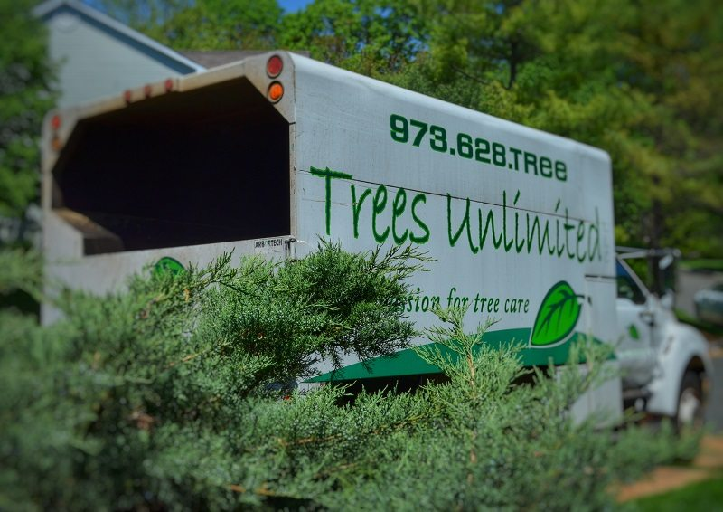 trees unlimited truck